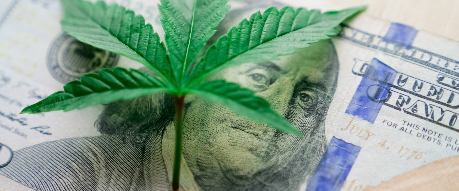 Cannabis Microbusinesses Potentially a Boon for the Hudson Valley